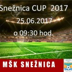 Snežnica cup 2017 U-15  nedeľa 25.06.2017