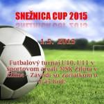 Snežnica cup 2015-plagát
